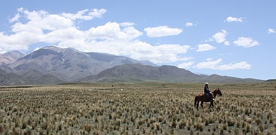 Mendoza horse back riding