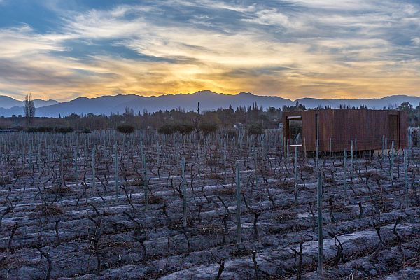 Entre Cielos Luxury vineyard