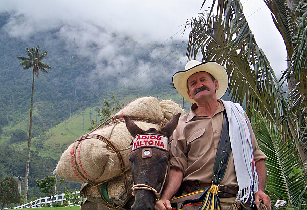 coffee region Colombia