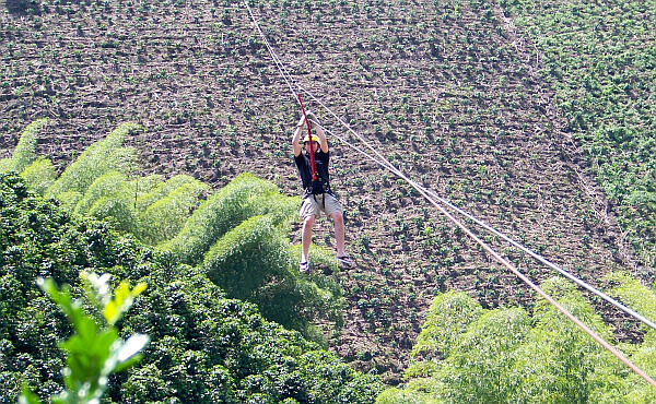 Coffee Zipline