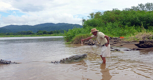 Crocodile hunting in Costa Rica