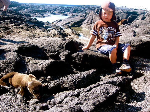 Boy and Galapagos sea lion
