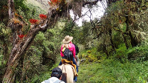 Choquechaca Peru