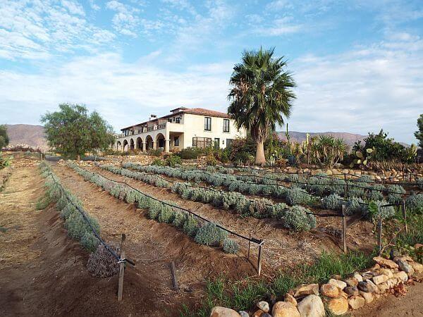 Villa del Valle hotel farm